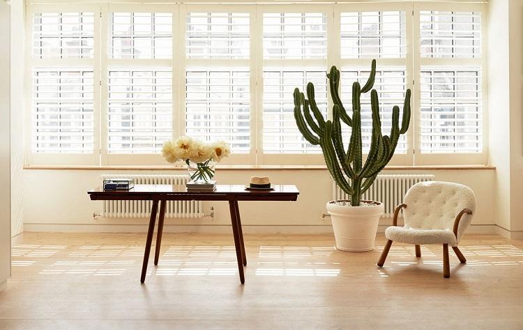 Masuknya cahaya ke rumah, Sumber : idea.grid.id