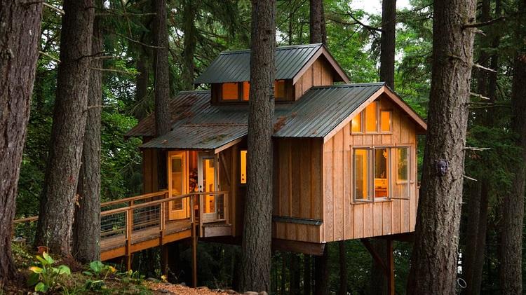 Akses masuk rumah pohon, Sumber : popbela.com