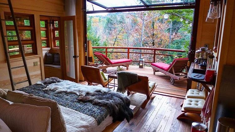 Interior rumah pohon, Sumber : economy.okezone.com