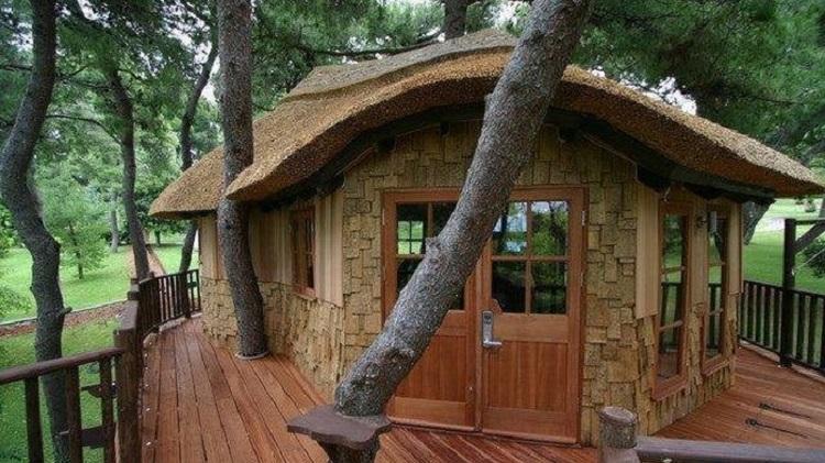 Membuat rumah pohon, Sumber : kaltim.tribunnews.com