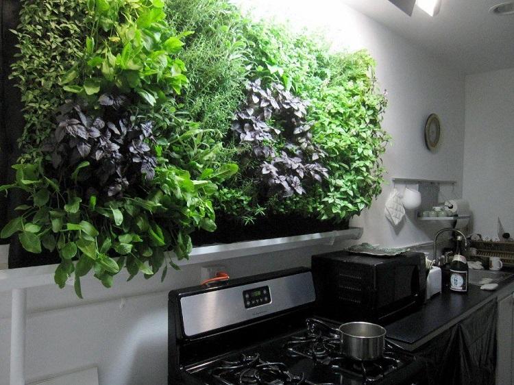 Taman di dapur, Sumber : Pinterest
